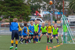 UHCC Soccer Coach 4461