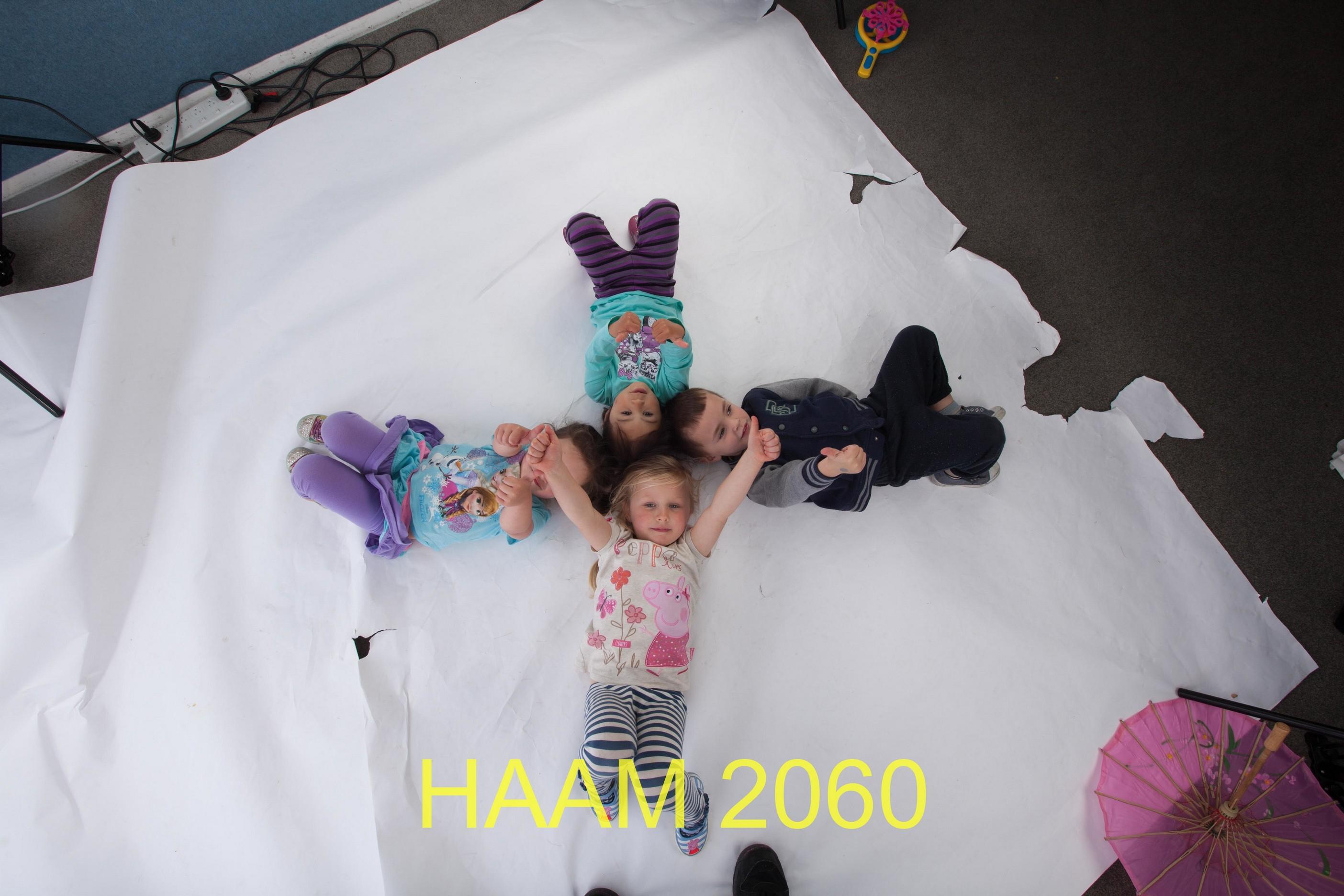 HAAM 2060