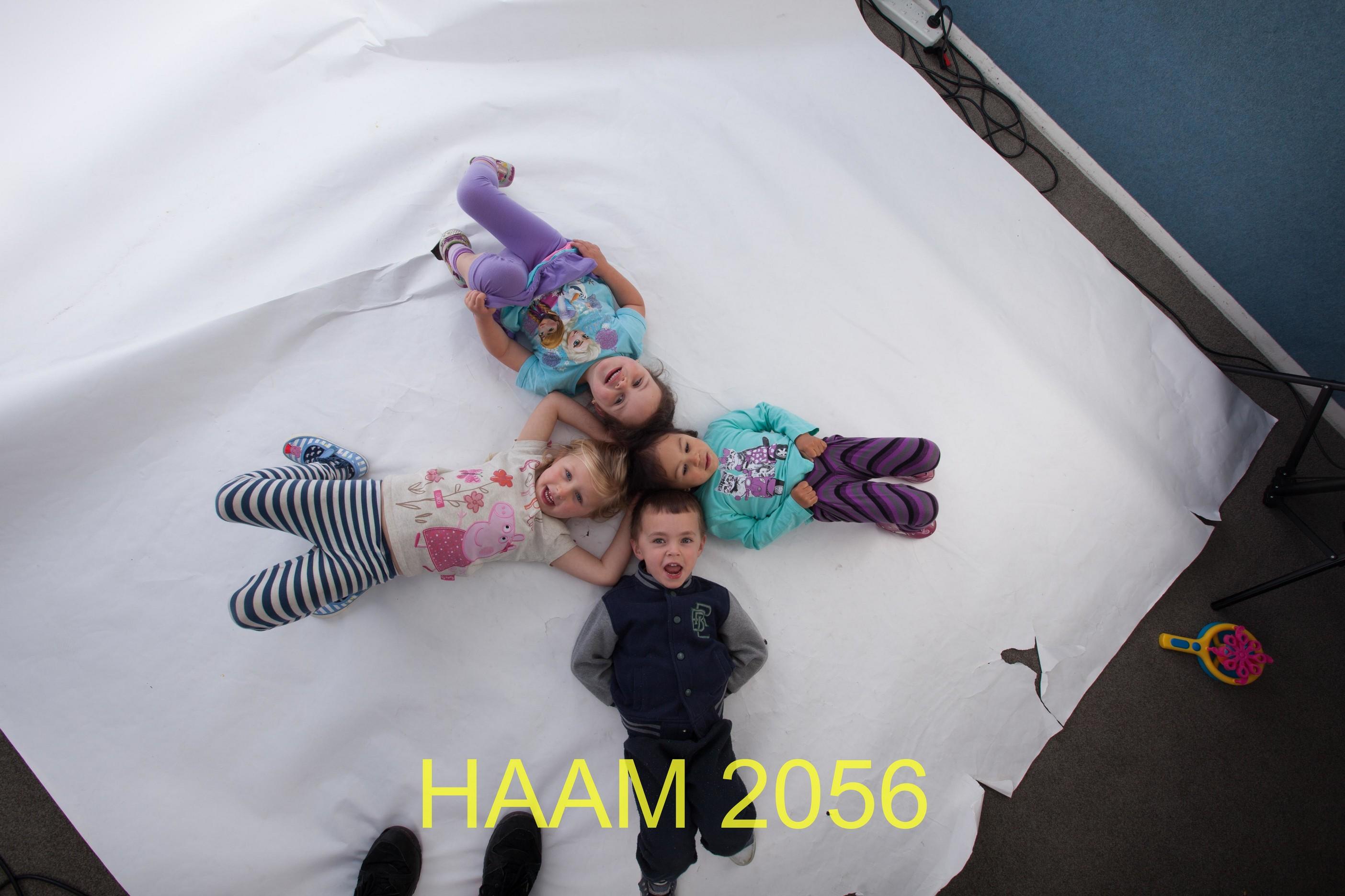 HAAM 2056