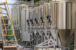 Kereru Brewing [2573]