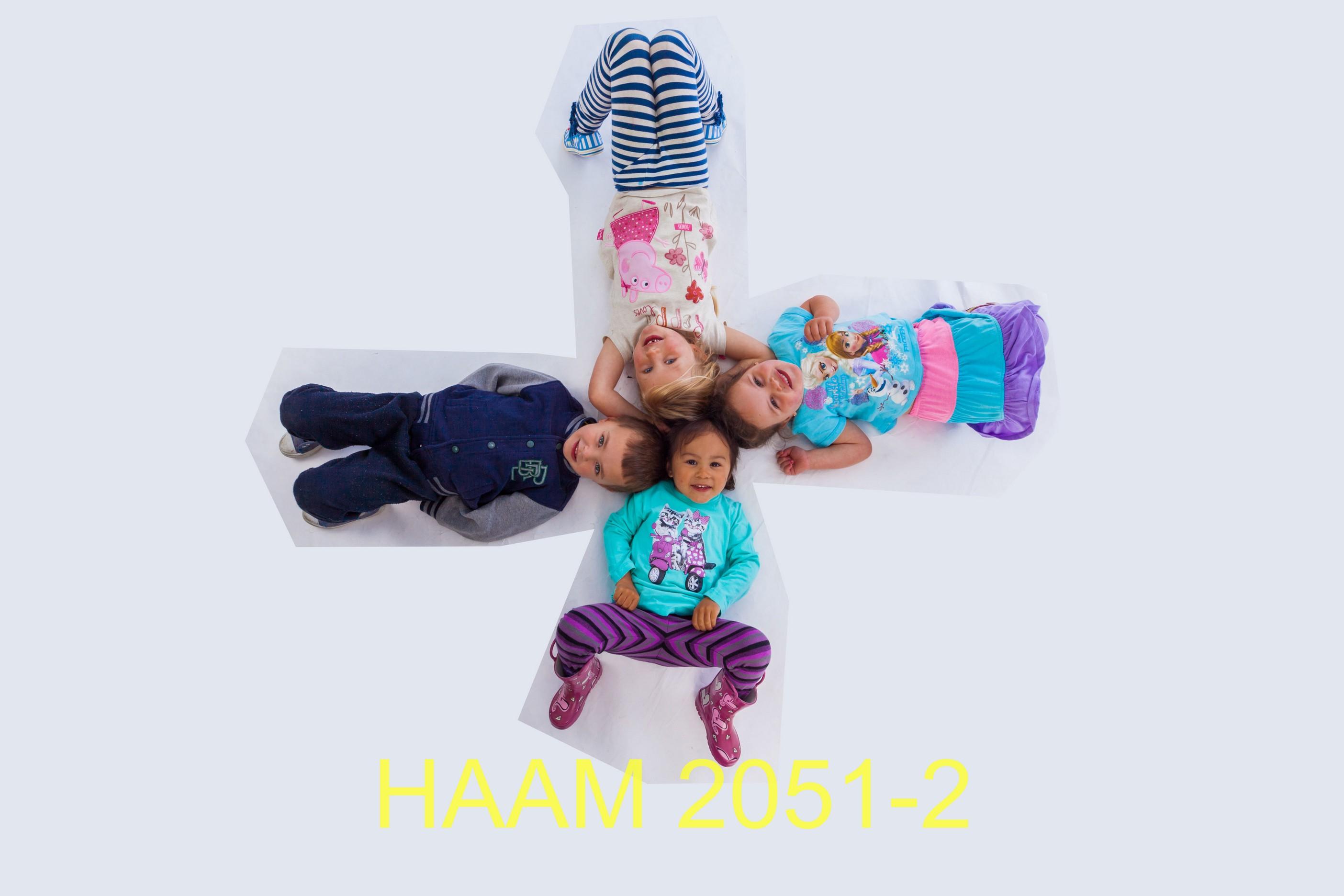 HAAM 2051-2
