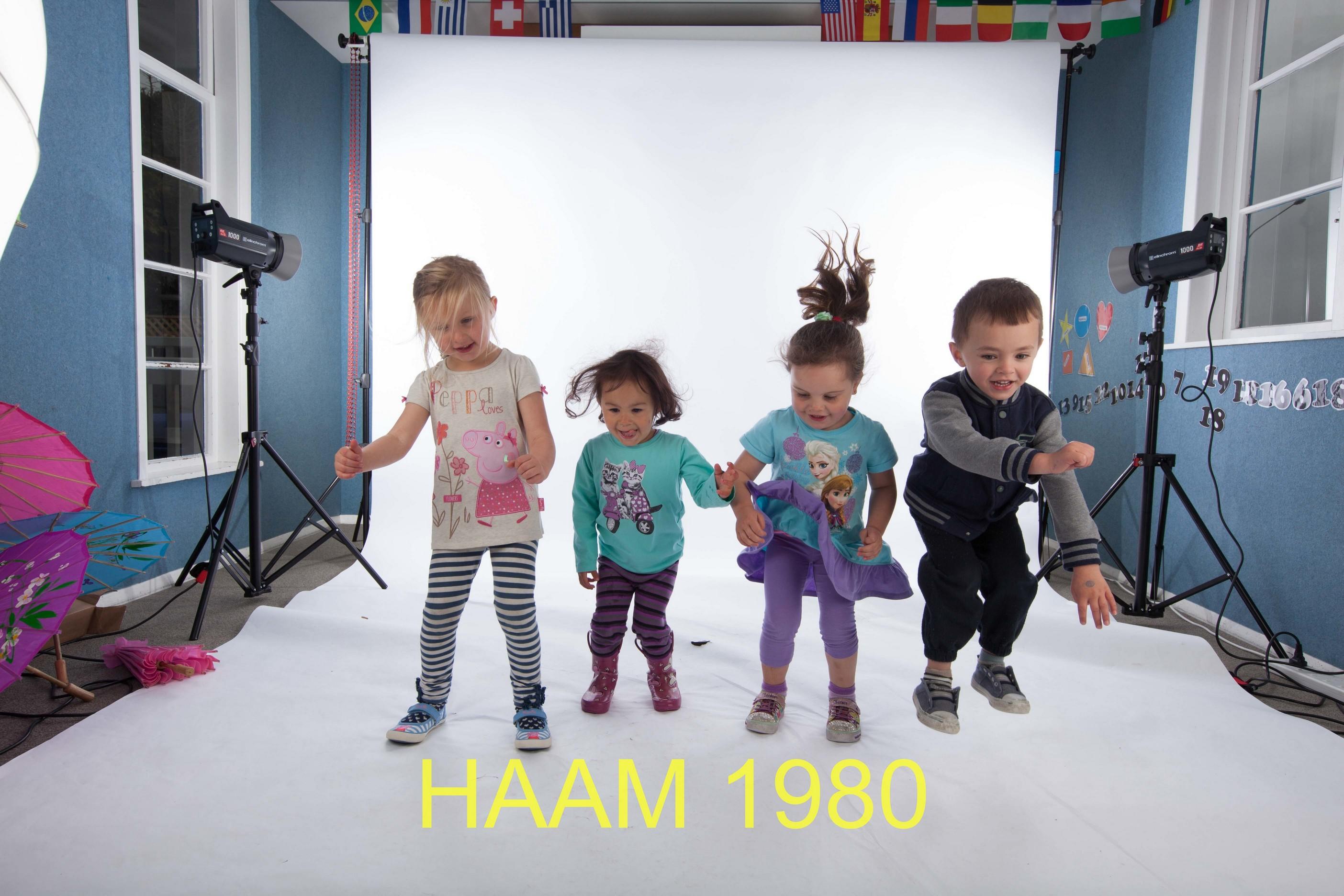 HAAM 1980