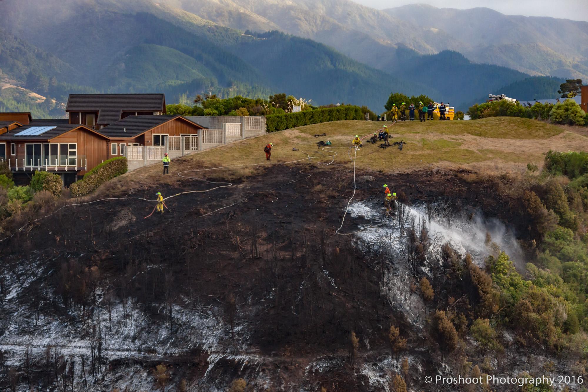 Te Marua Rural Fire 9675