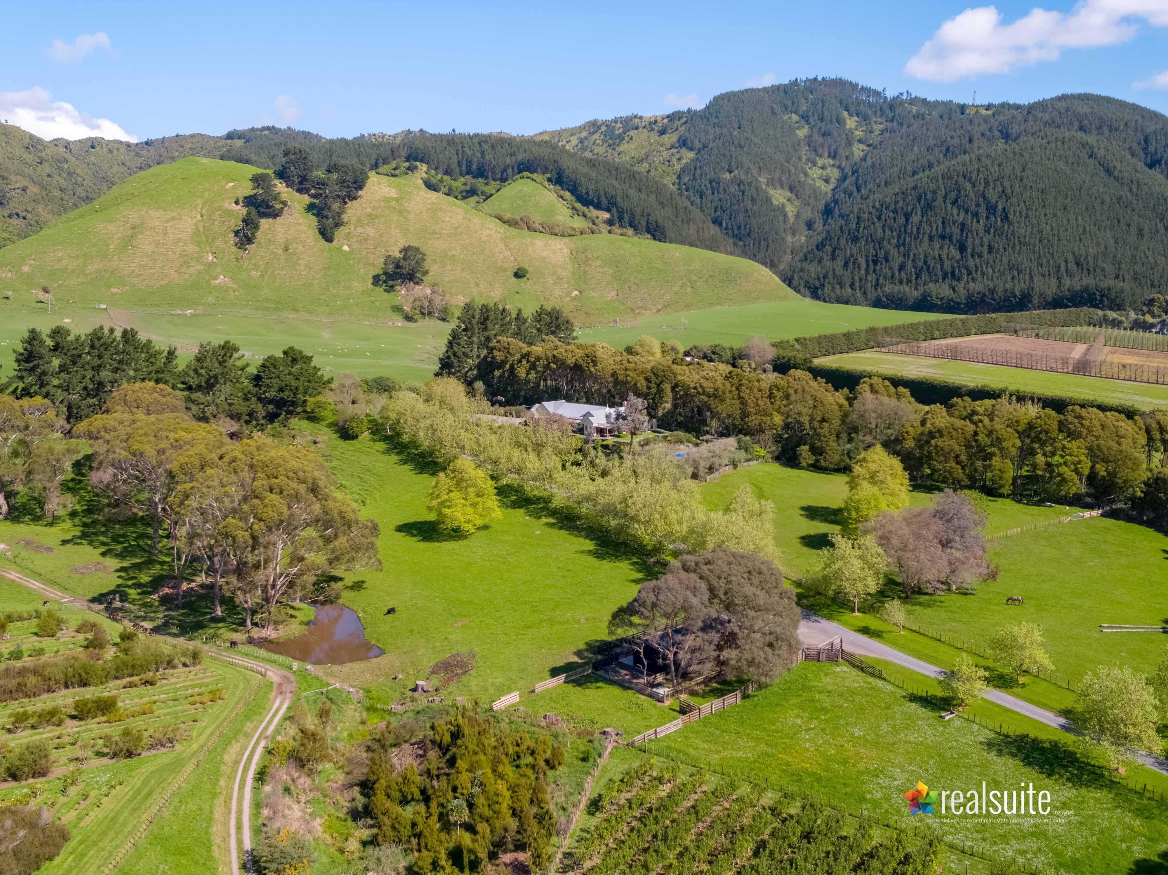 181 Settlement Road, Te Horo Aerial 0696