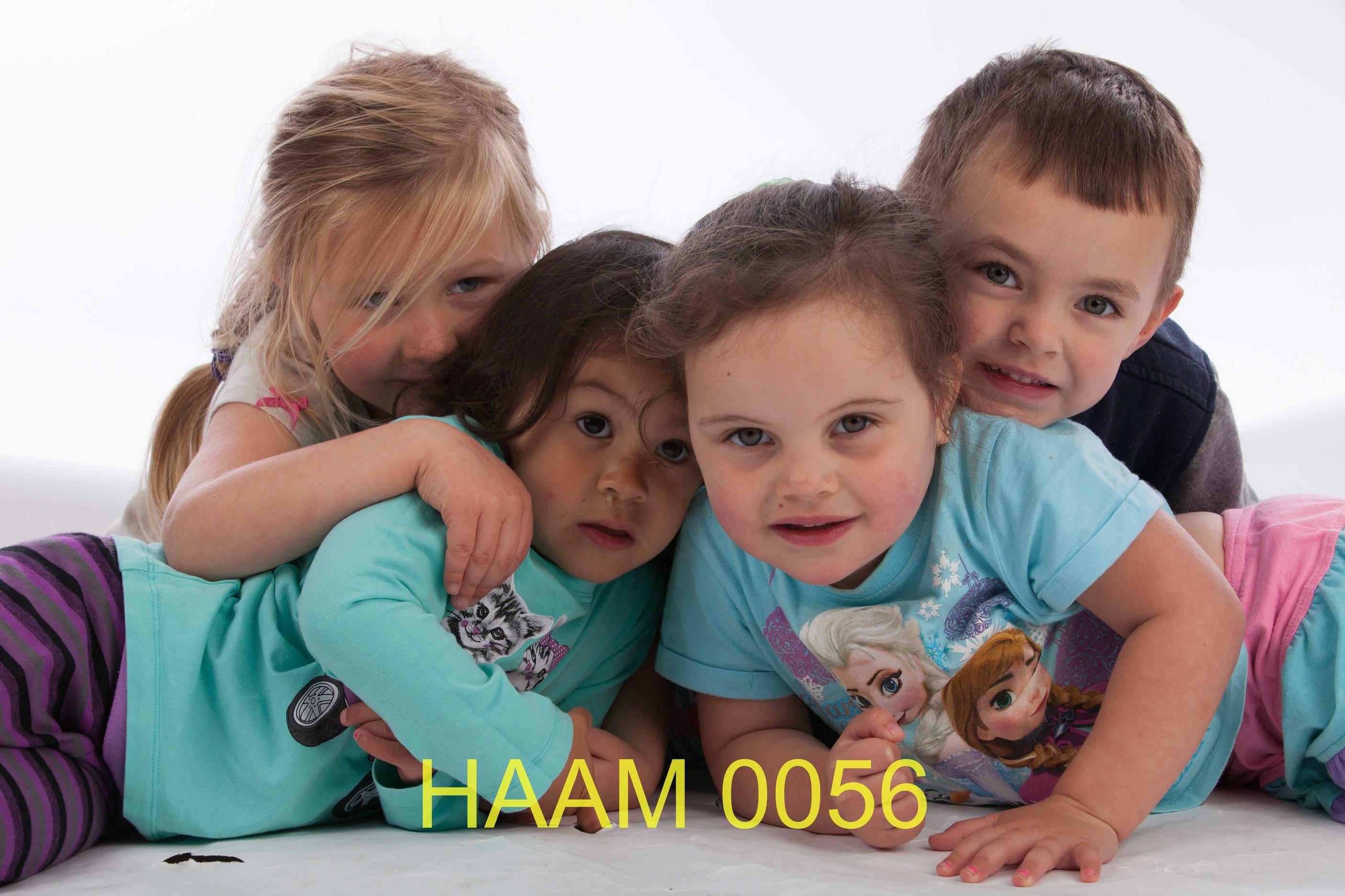 HAAM 0056