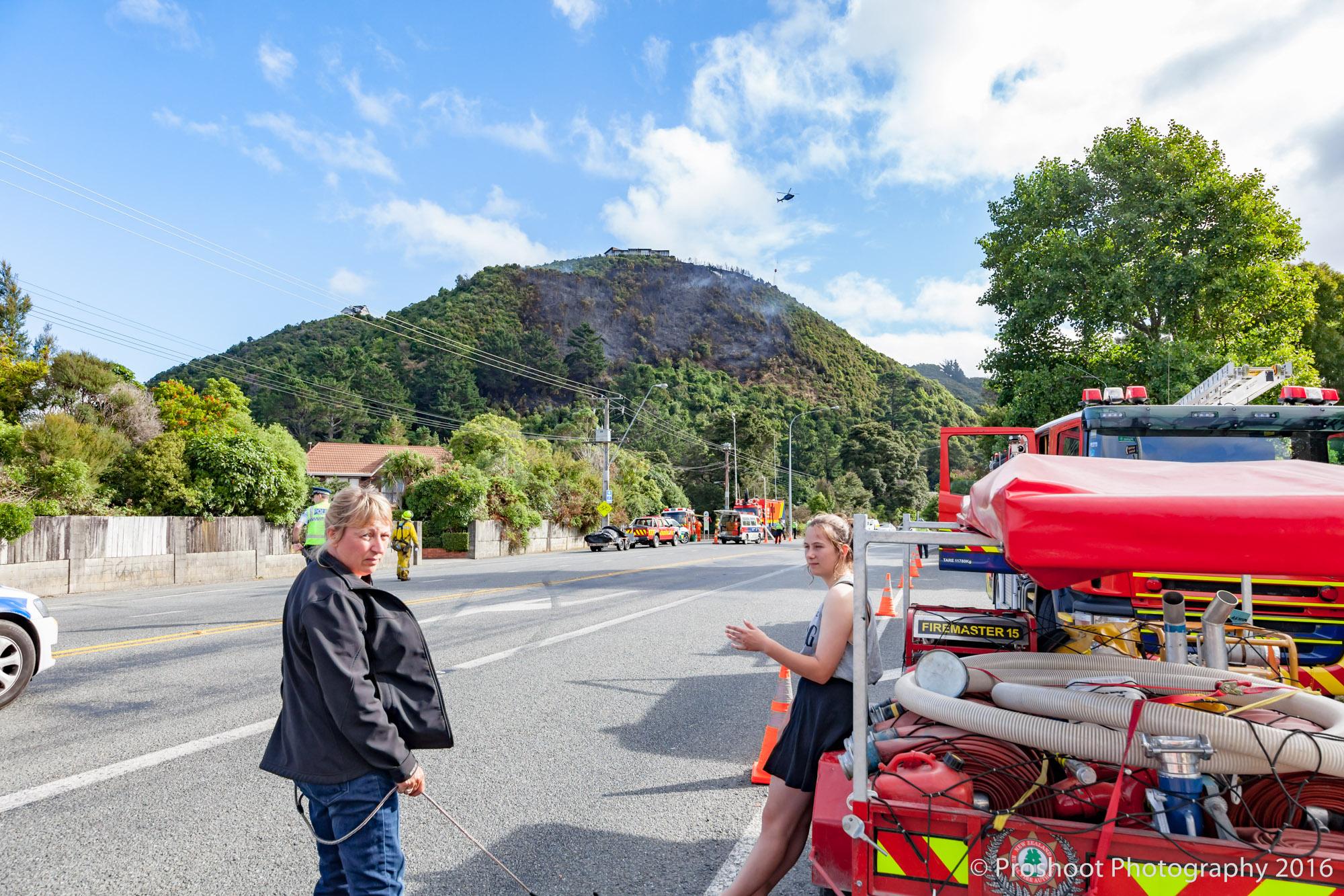 Te Marua Rural Fire 3255
