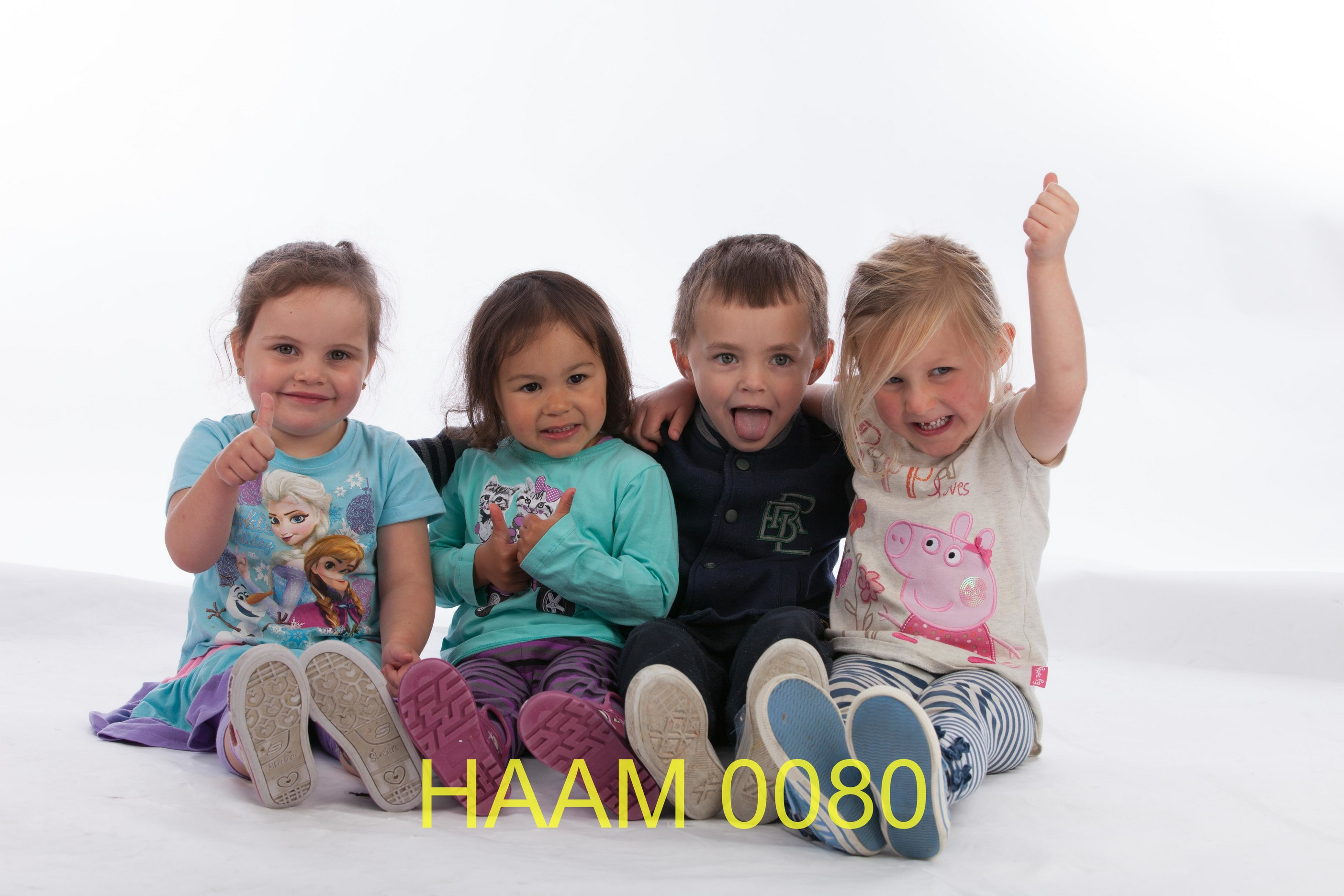 HAAM 0080