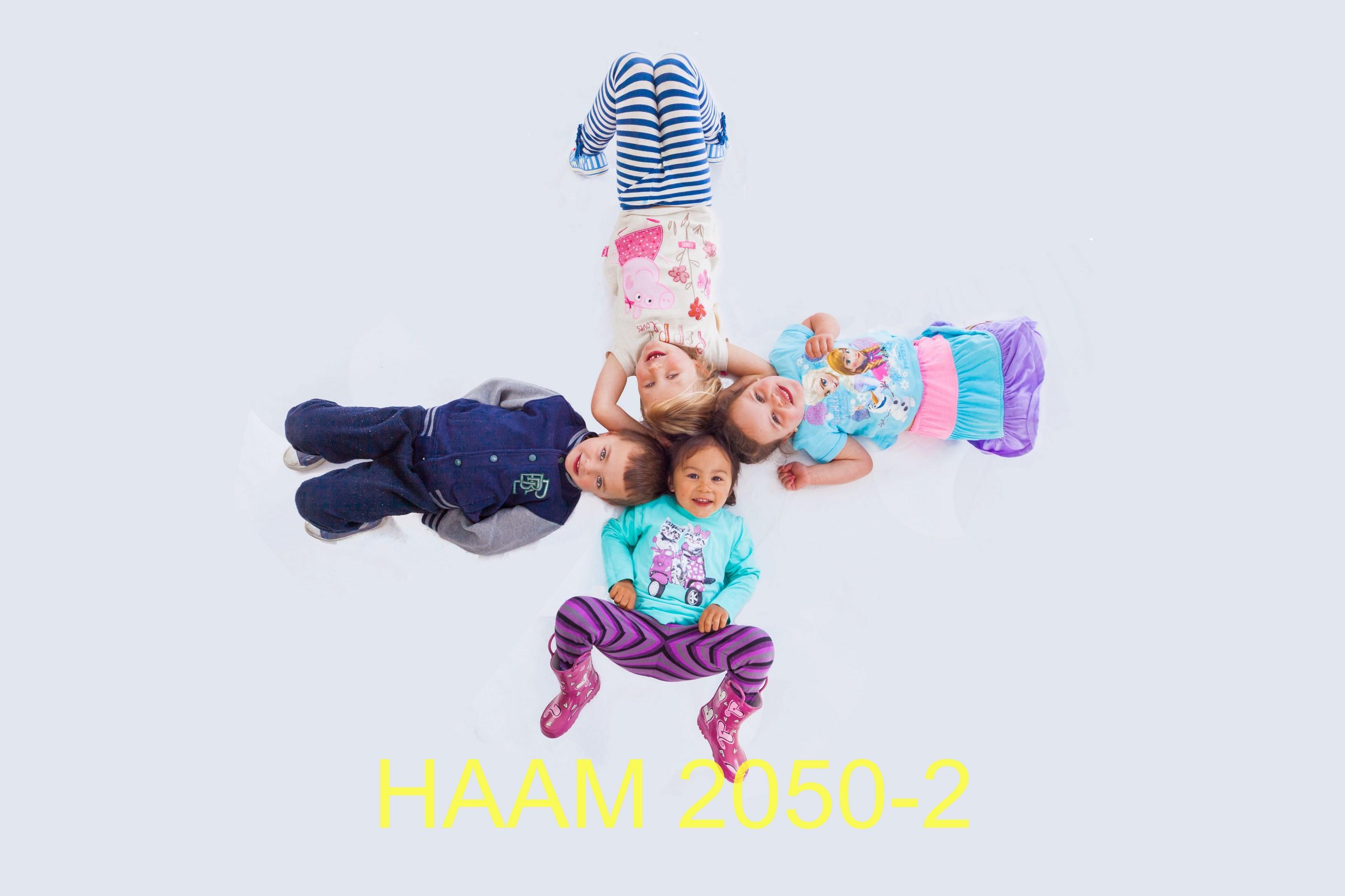 HAAM 2050-2