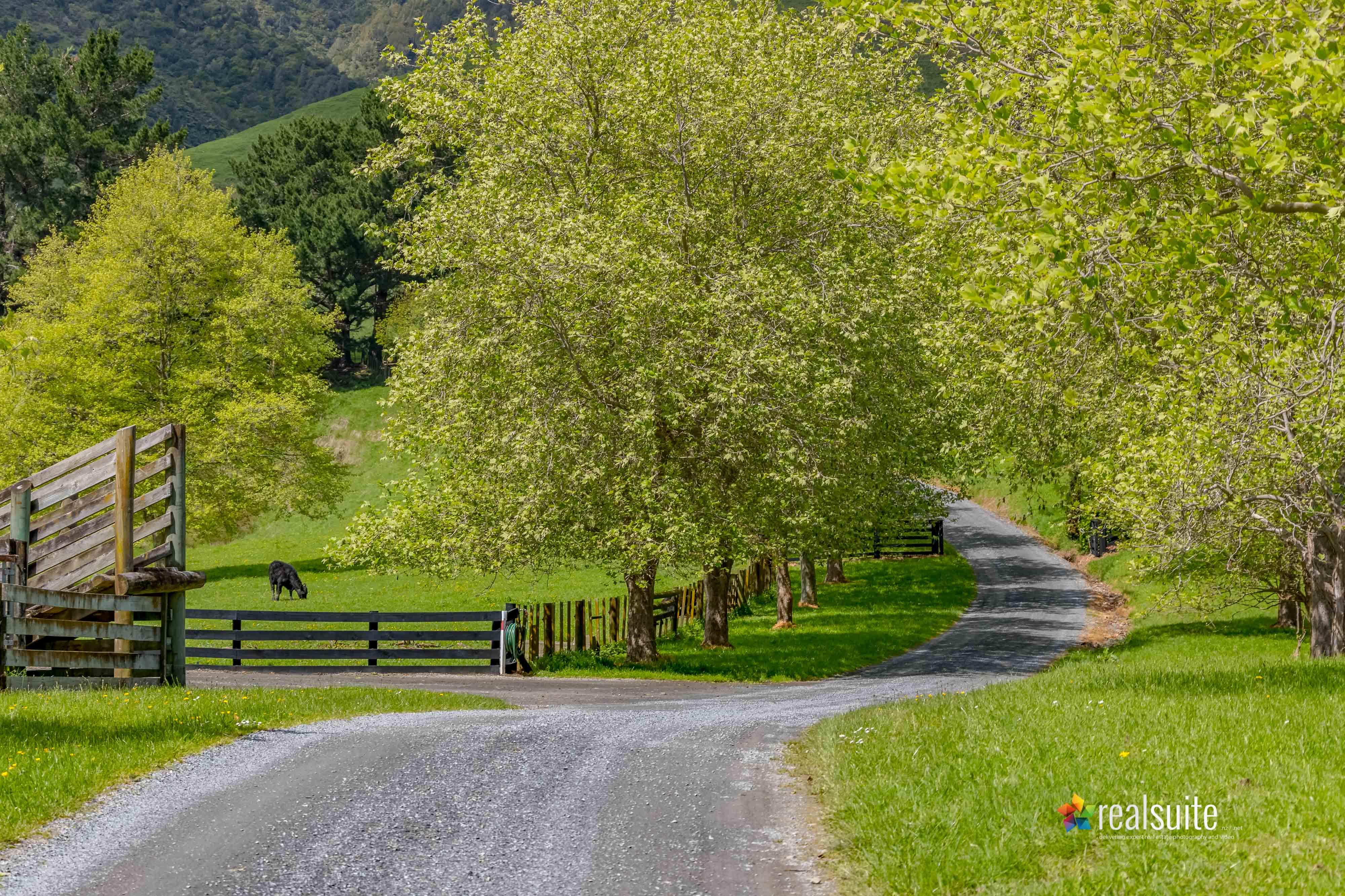 181 Settlement Road, Te Horo 8414