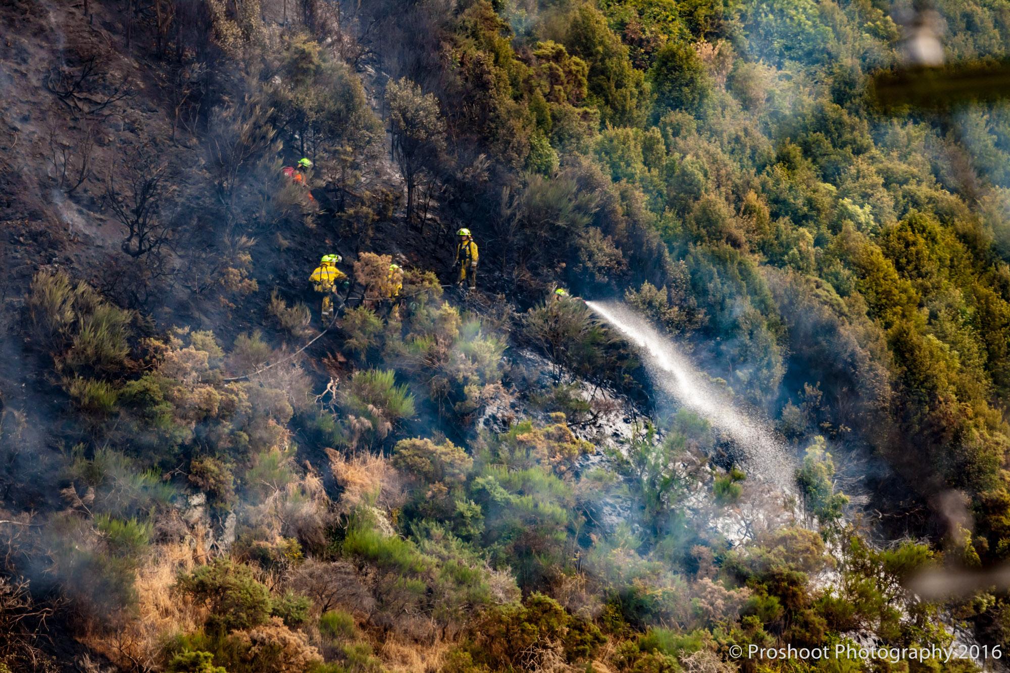 Te Marua Rural Fire 9075