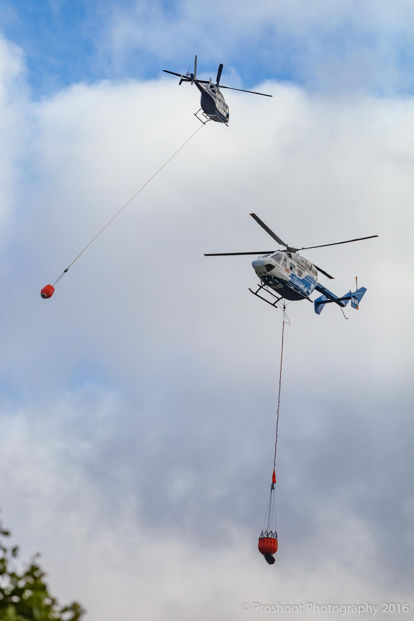 Te Marua Rural Fire 9247