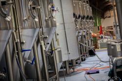 Kereru Brewing [2544]