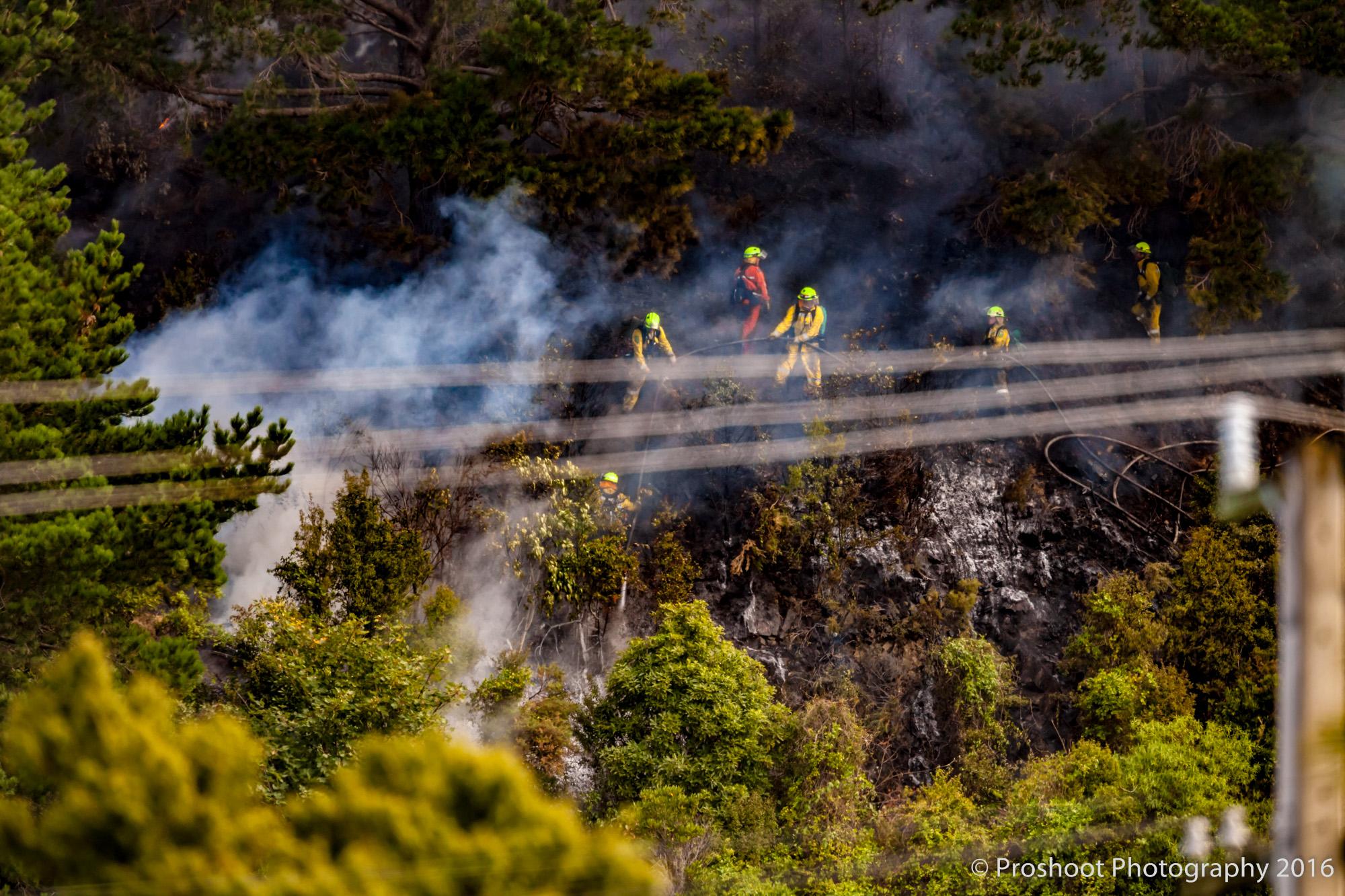 Te Marua Rural Fire 9090