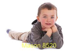 Mason 8520