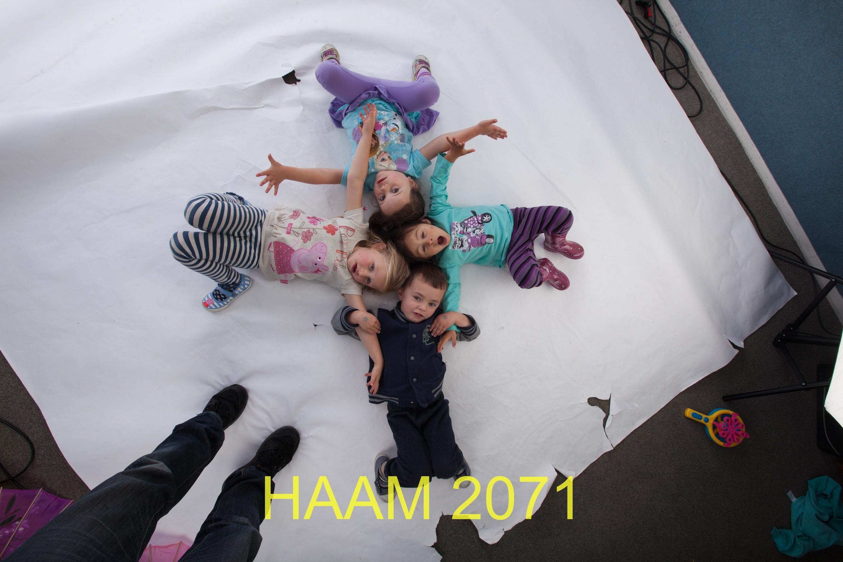 HAAM 2071