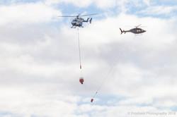 Te Marua Rural Fire 9588