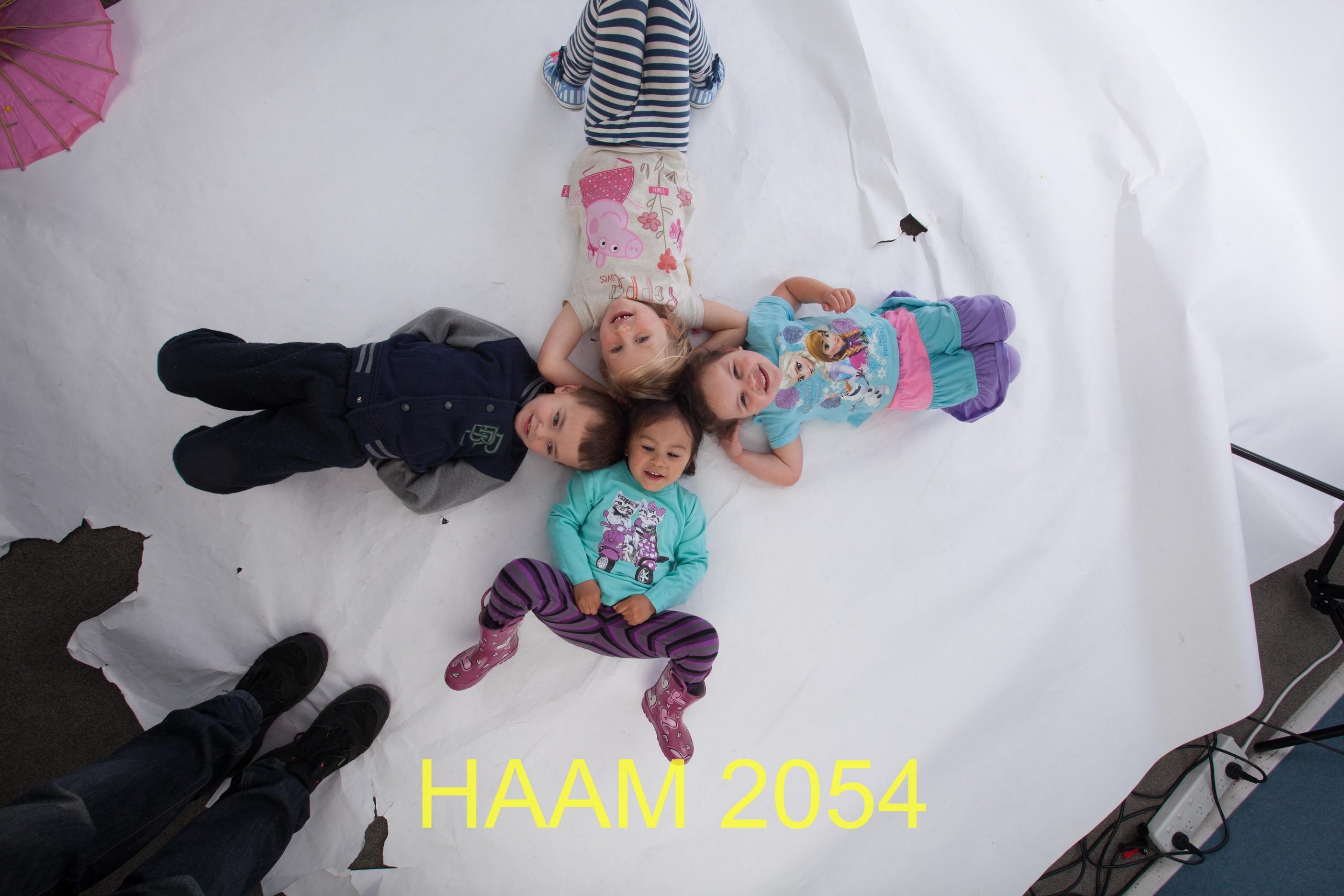 HAAM 2054