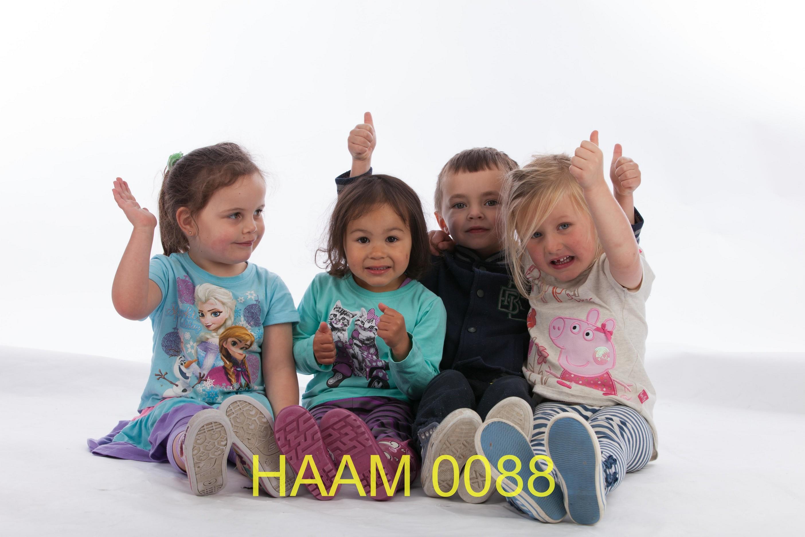 HAAM 0088