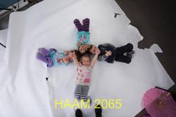 HAAM 2065