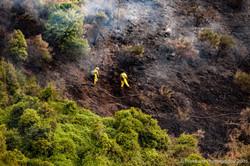 Te Marua Rural Fire 9047
