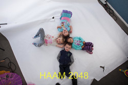 HAAM 2048