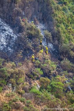 Te Marua Rural Fire 9317