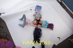 HAAM 2046