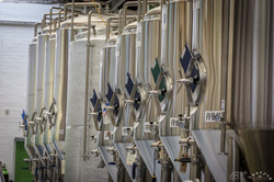 Kereru Brewing [2576]