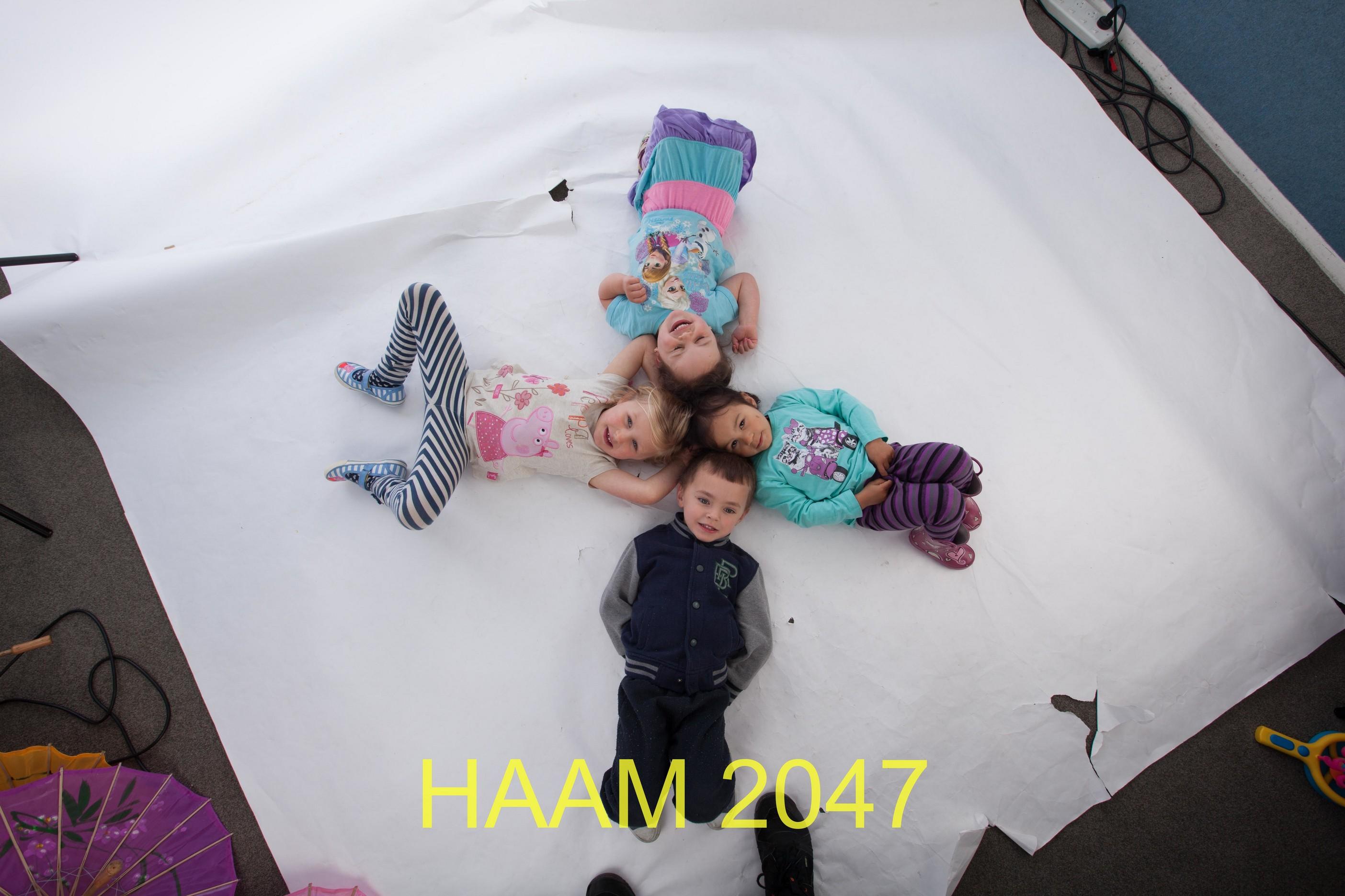 HAAM 2047