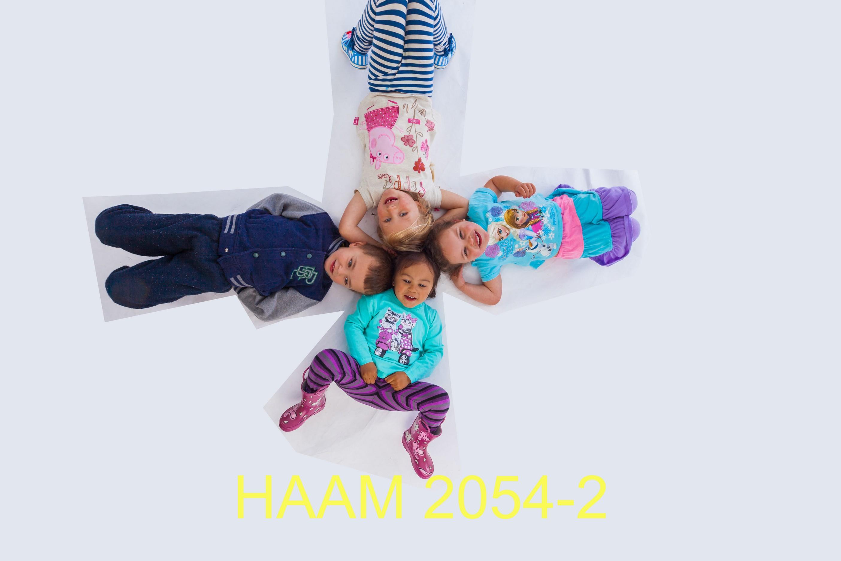 HAAM 2054-2