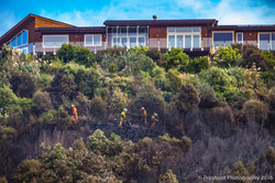Te Marua Rural Fire 9293