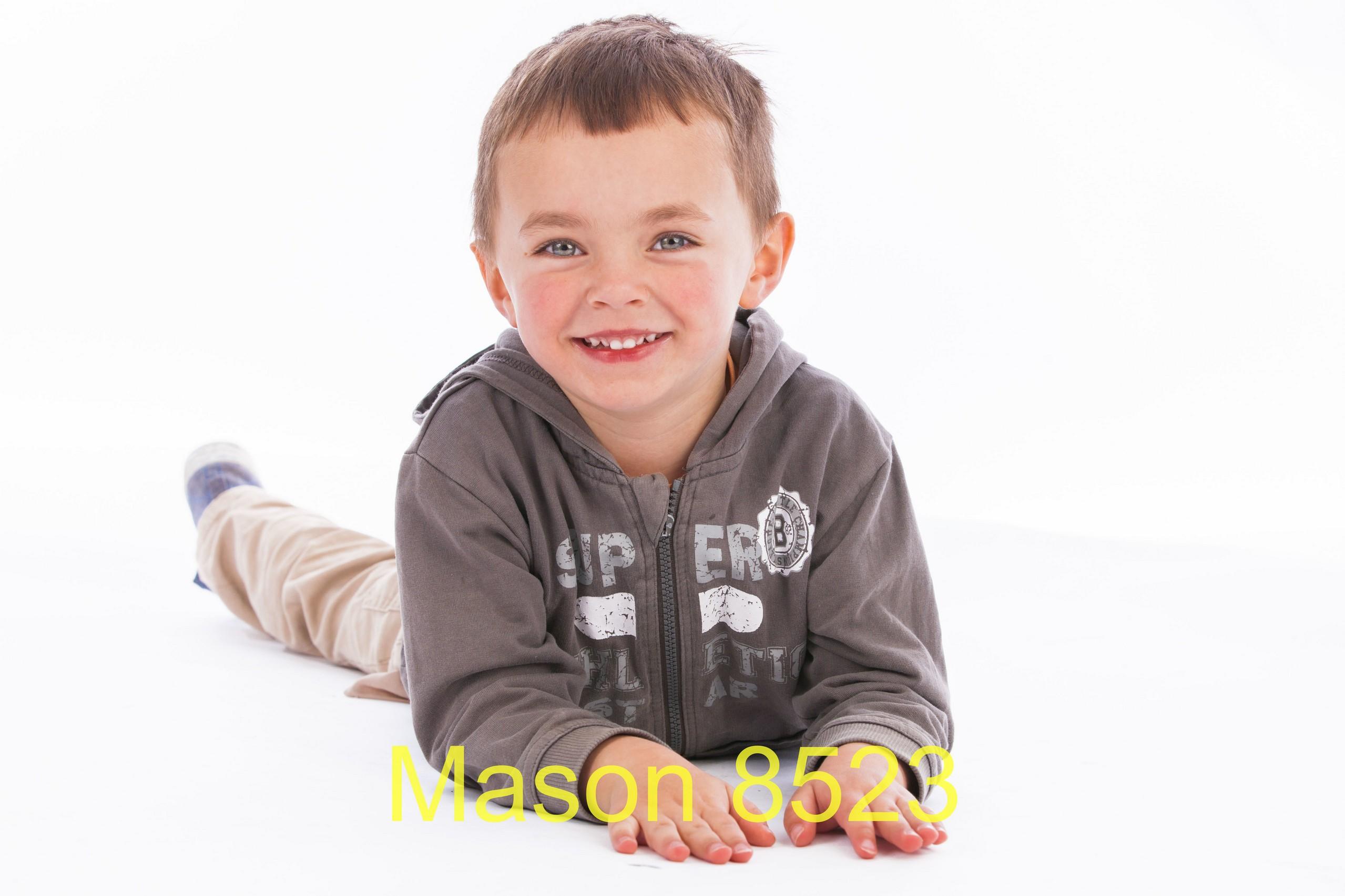 Mason 8523
