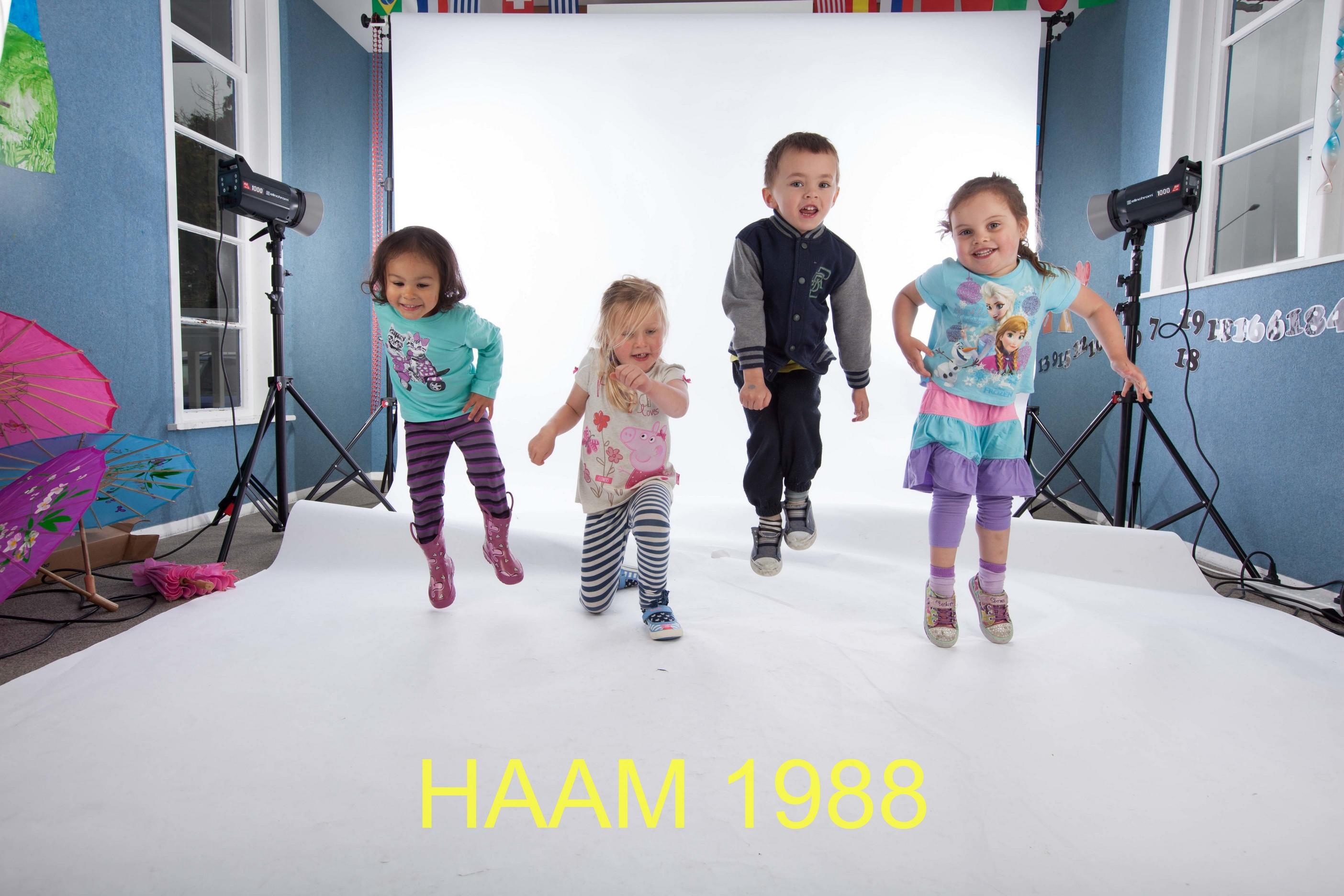 HAAM 1988