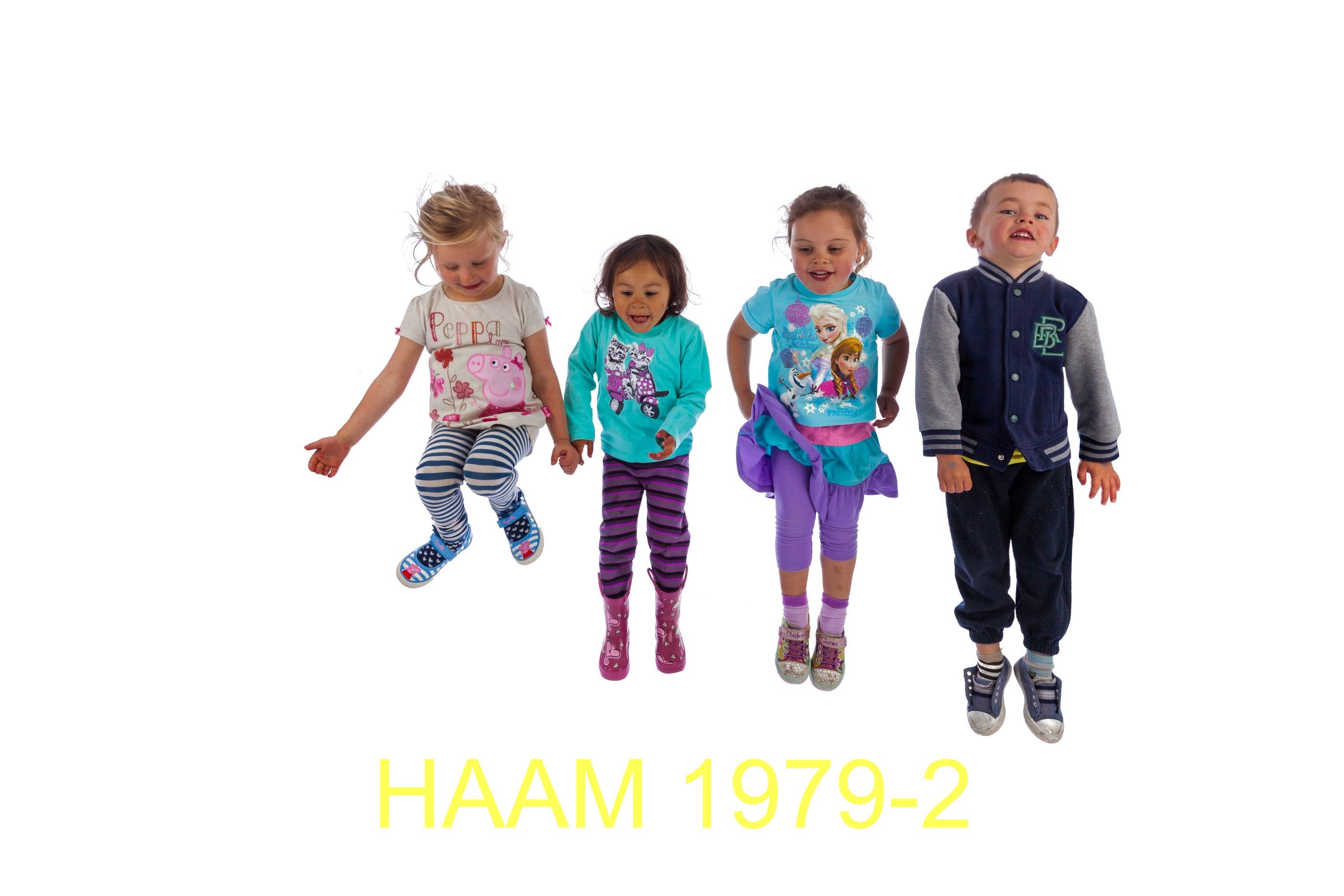 HAAM 1979-2