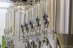 Kereru Brewing [2577]