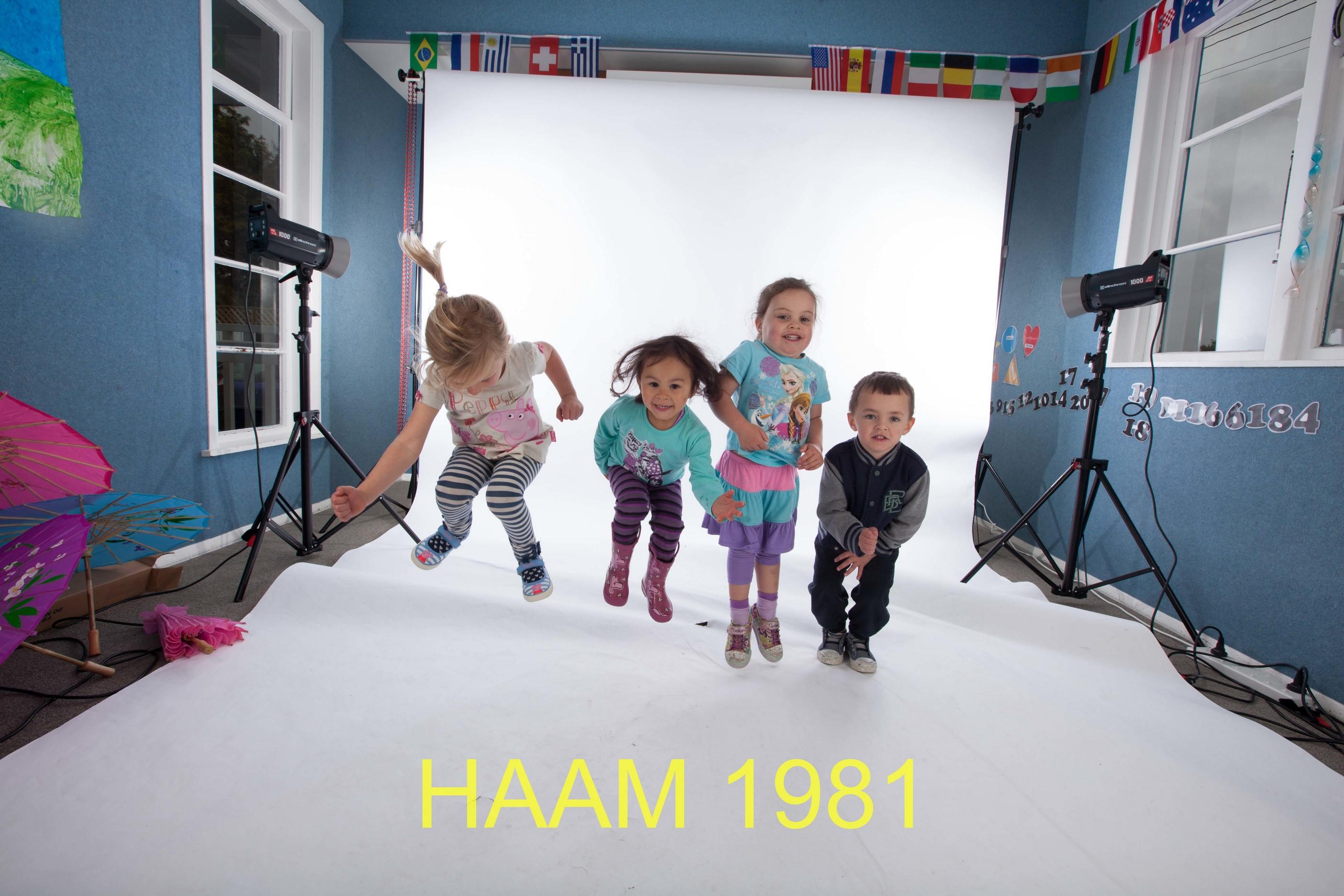 HAAM 1981
