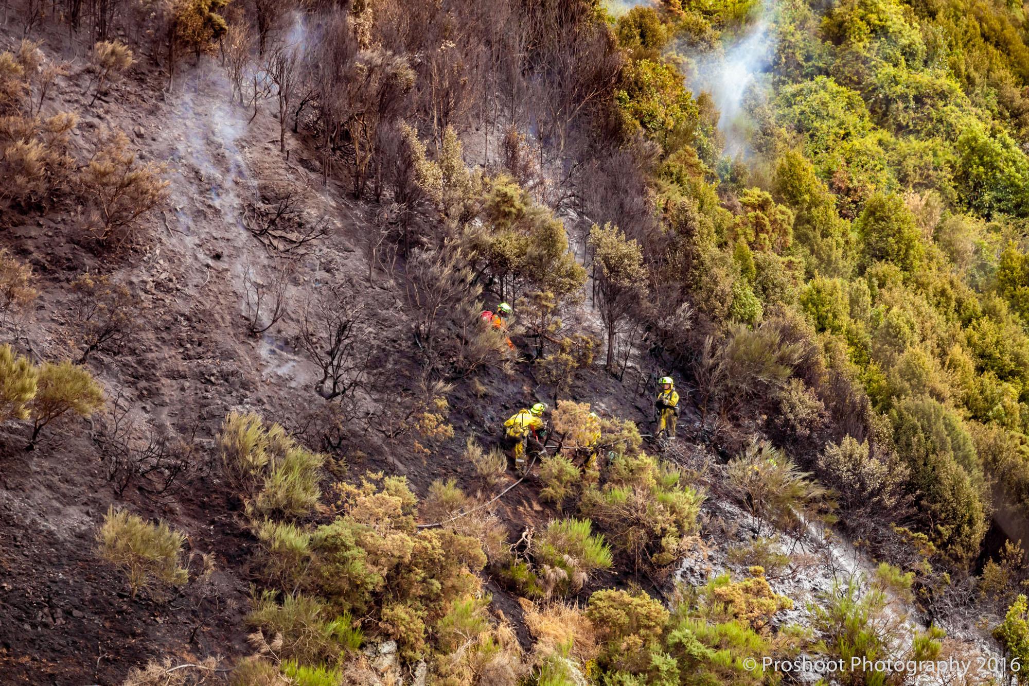 Te Marua Rural Fire 9071