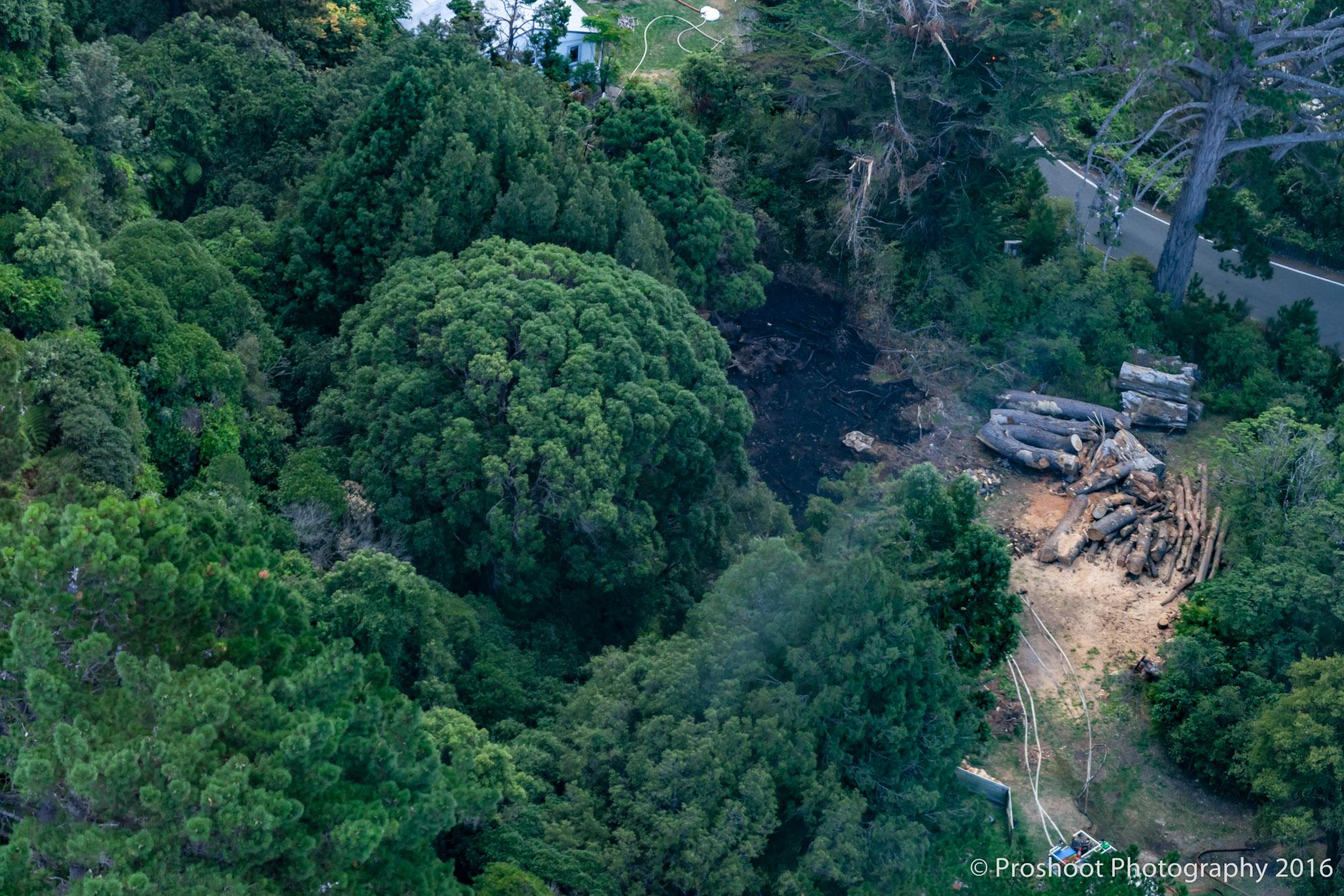 Te Marua Rural Fire 9702