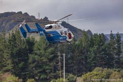 Te Marua Rural Fire 9003