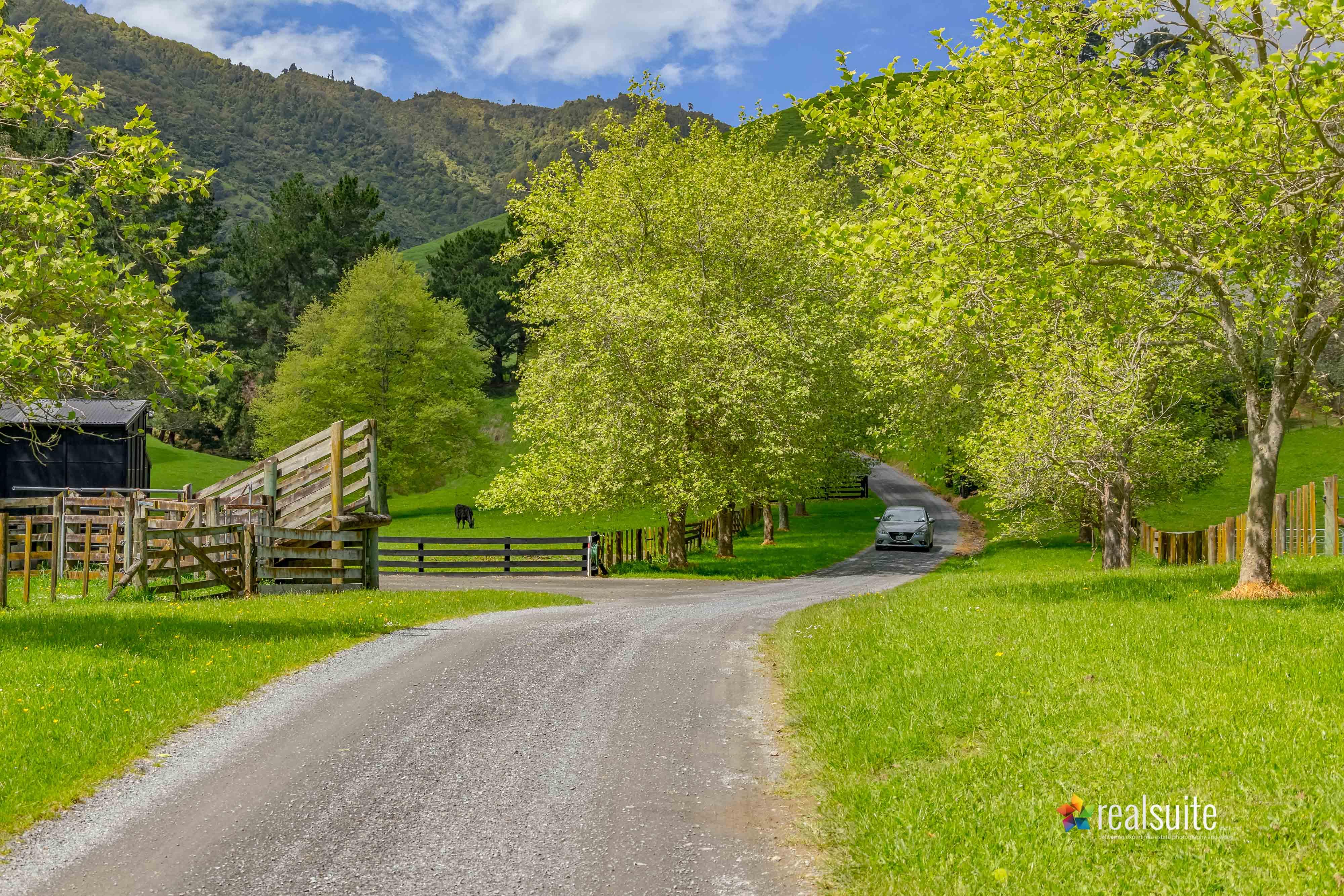 181 Settlement Road, Te Horo 8420-Car