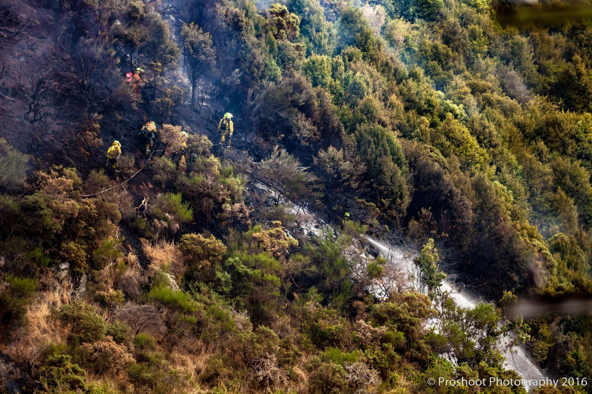 Te Marua Rural Fire 9050