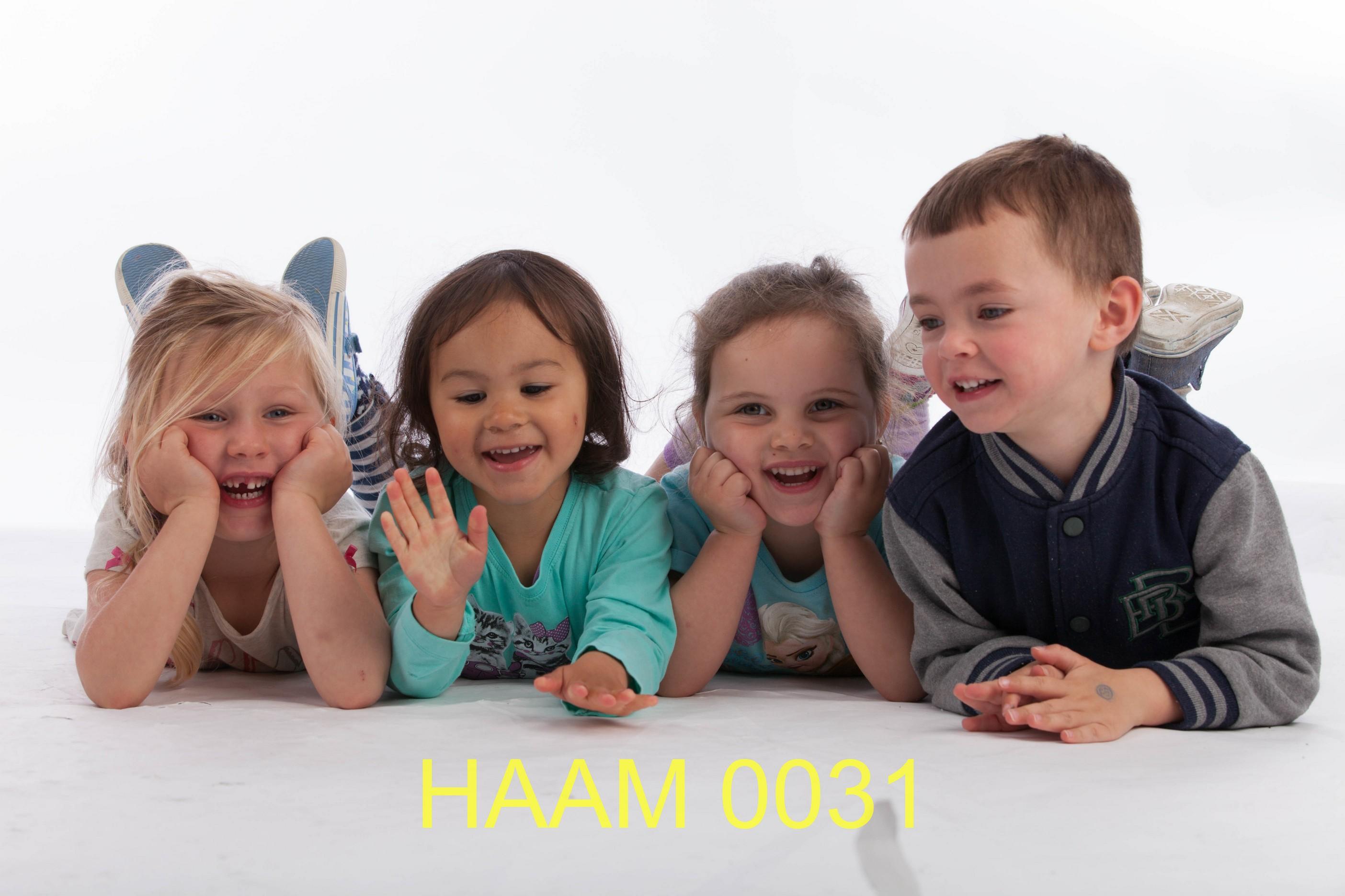 HAAM 0031