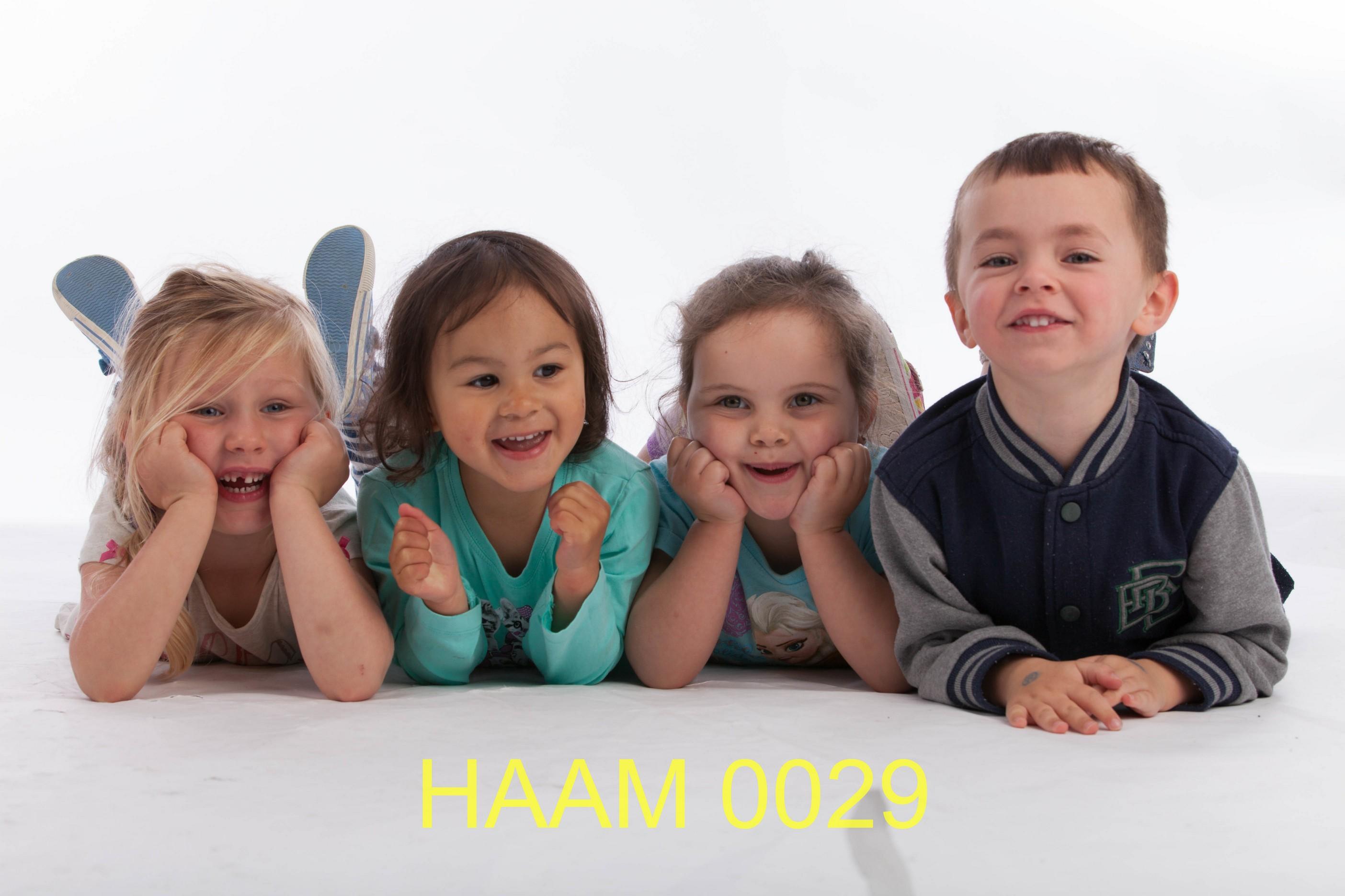 HAAM 0029