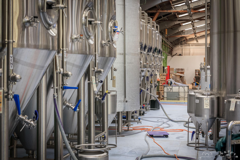 Kereru Brewing [2536]