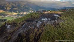 Te Marua Rural Fire 9672