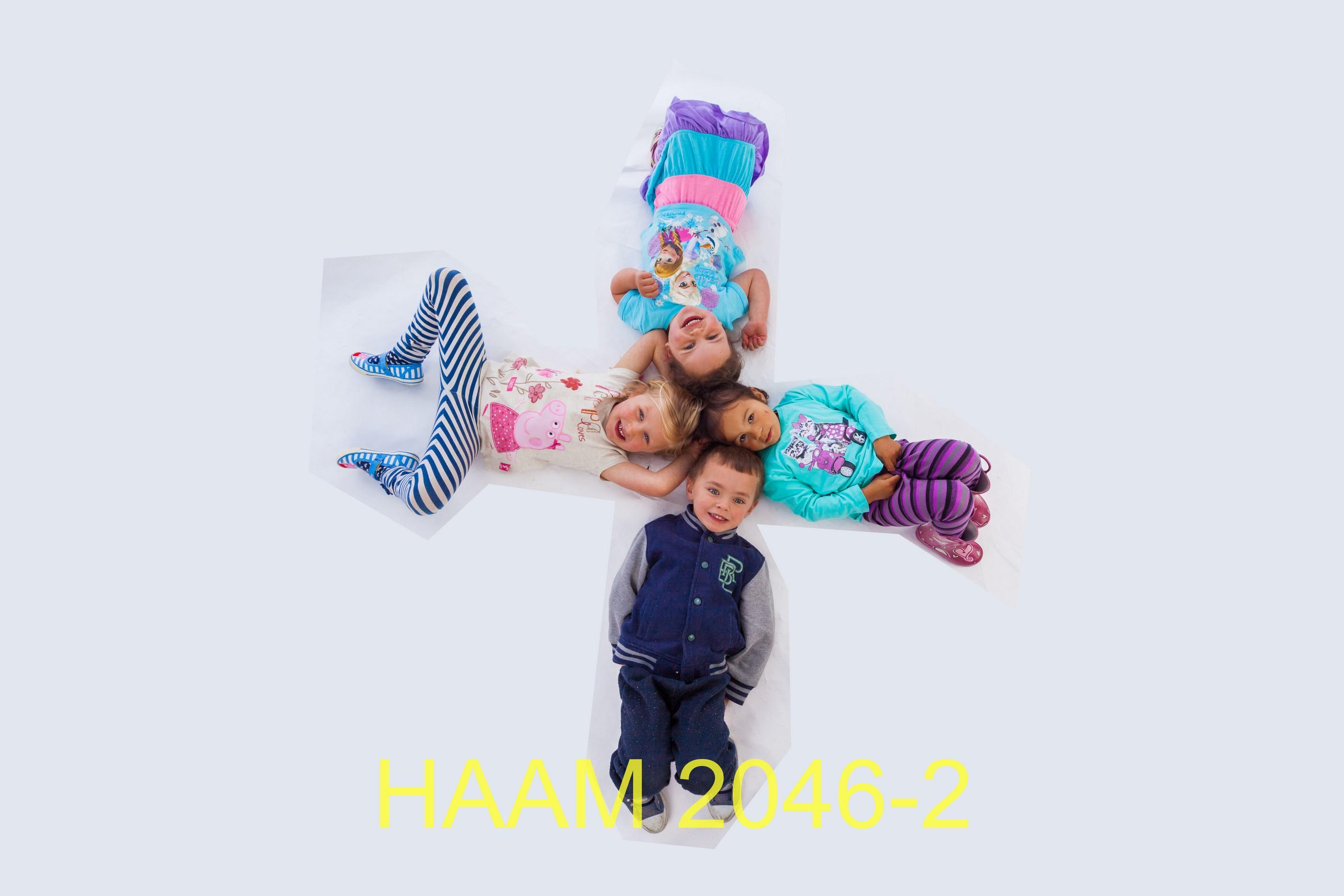 HAAM 2046-2
