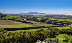 181 Settlement Road, Te Horo Aerial 0741
