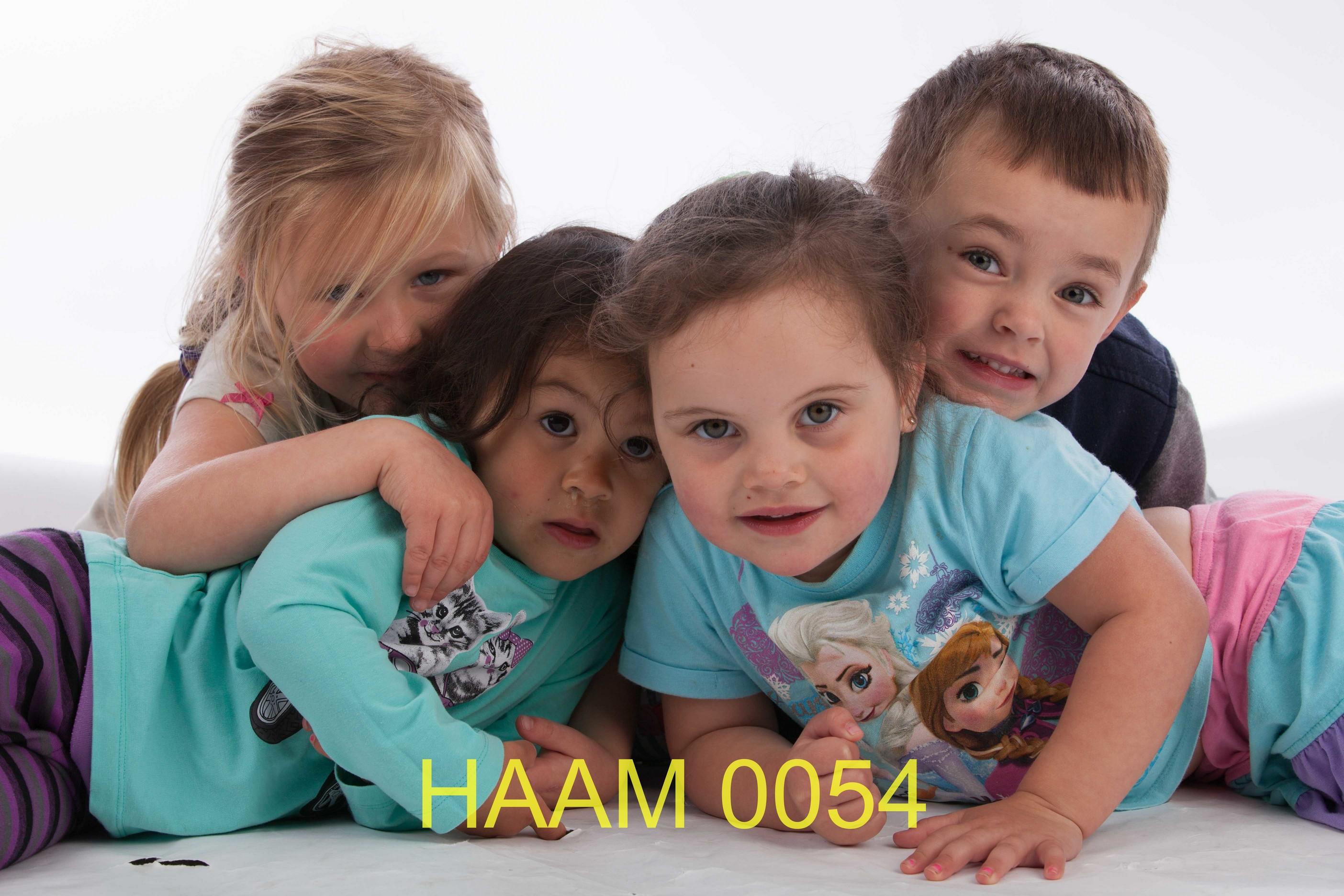 HAAM 0054