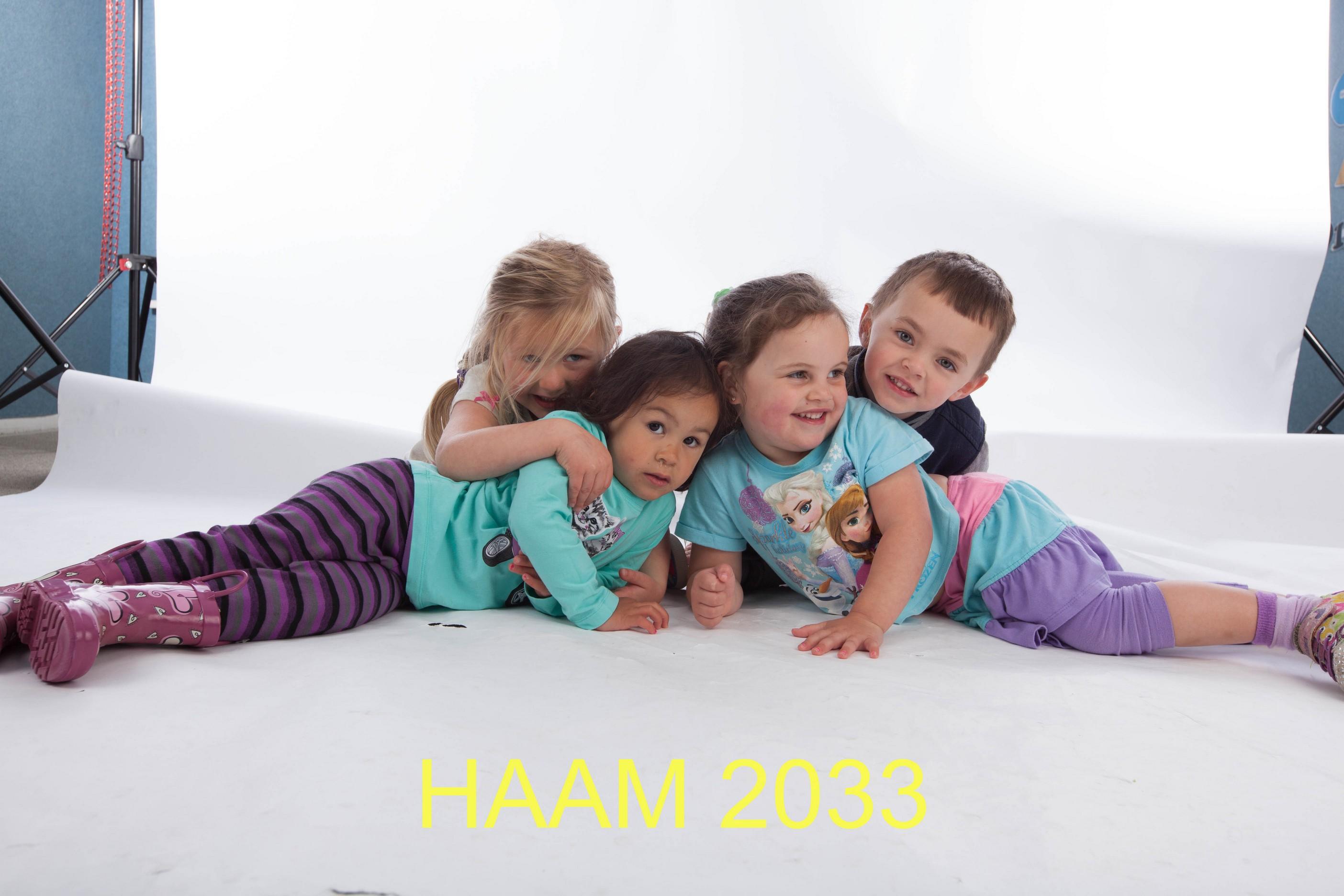 HAAM 2033