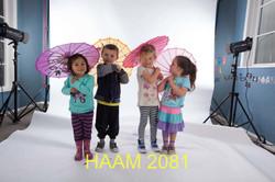 HAAM 2081